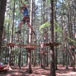 Netex pořádal nácvik lezeckých technik v lanovém centru.